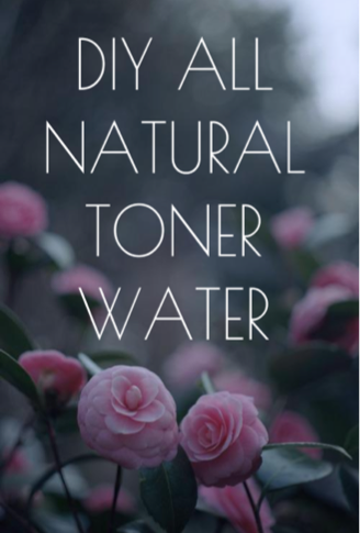 NATURAL BEAUTY: 4 Homemade Toner waters feat. Rose Water, Aloe Vera, Lemon & Apple